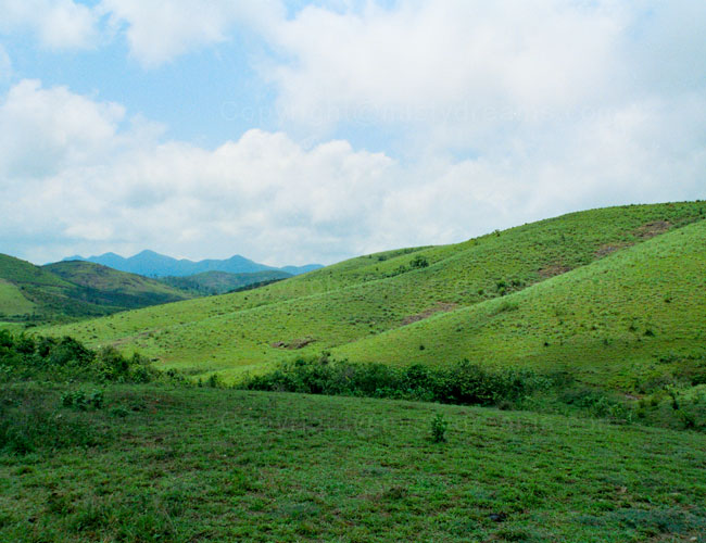 Vagamon meadows